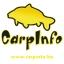 Carpinfo Hungary Kft