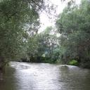 A vadregényes Ipoly