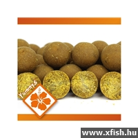 IB Carptrack Osmotic Oriental Spice Bojli - SPECIAL EDTITION 20mm/5kg