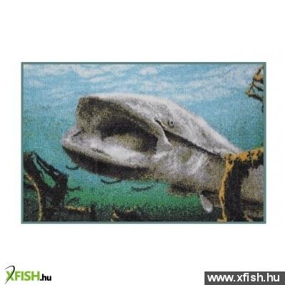 delphin Szőnyeg 3D harcsa e994ce663a